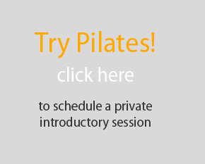 Try Pilates! click here to schedule a private introductory sess